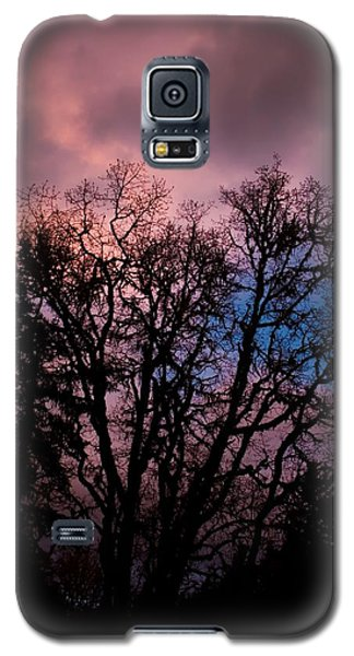 Lavender Storm Galaxy S5 Case by Tyra  OBryant