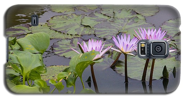 Lavender Waterlilies Galaxy S5 Case
