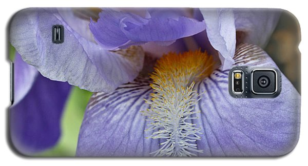 Galaxy S5 Case featuring the photograph Lavish Iris by Julie Andel