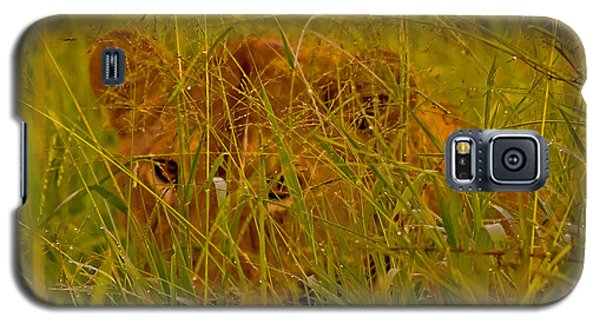 Galaxy S5 Case featuring the photograph Laying In The Grass by J L Woody Wooden