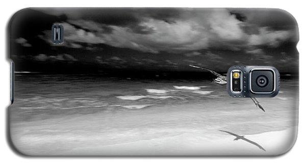 Laysan Albatross French Frigate Shoals Galaxy S5 Case by Paul D Stewart