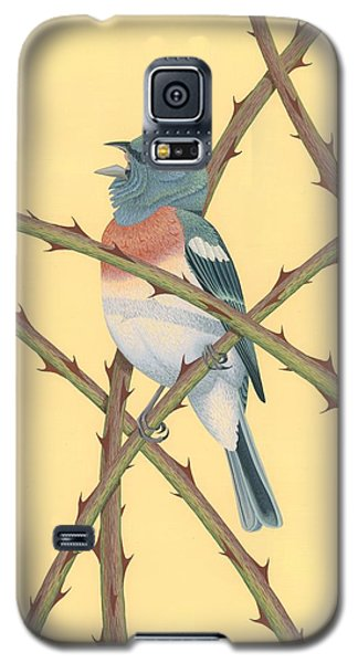Bunting Galaxy S5 Case - Lazuli Bunting by Nathan Marcy