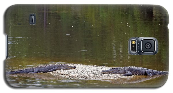Lazy Alligators Galaxy S5 Case