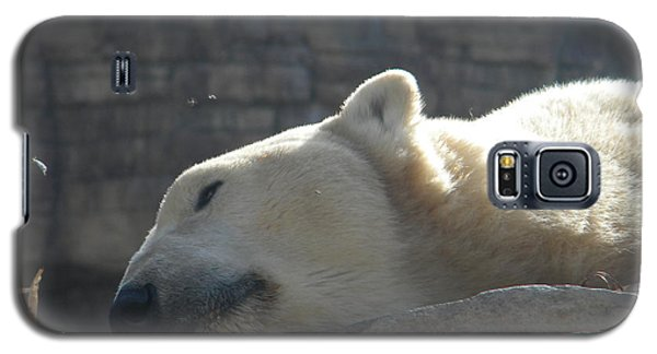 Lazy Polar Bear Galaxy S5 Case