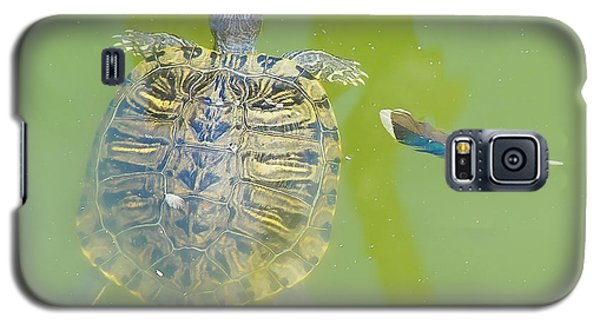 Galaxy S5 Case featuring the photograph Lazy Summer Afternoon - Floating Turtle by Menega Sabidussi