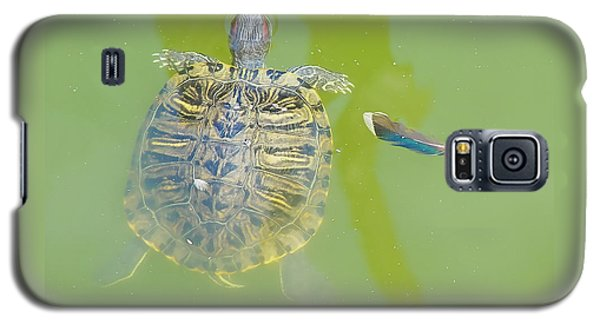 Lazy Summer Afternoon - Floating Turtle Galaxy S5 Case