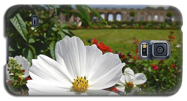 Le Fleur De Versailles Galaxy S5 Case by Suzanne Oesterling
