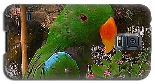 Le Parrot Galaxy S5 Case by Chris Tarpening