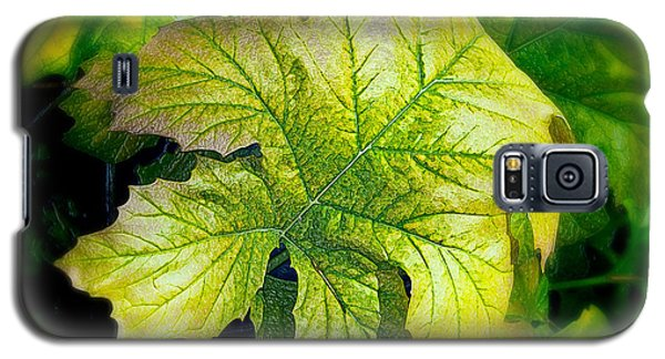 Leaf Abstract 002 Galaxy S5 Case