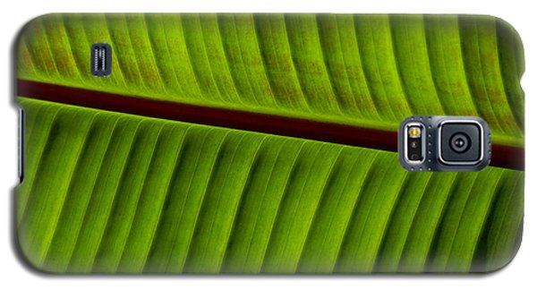 Leaf Abstract Galaxy S5 Case