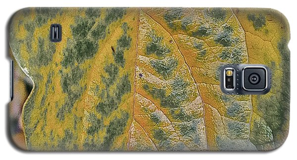 Galaxy S5 Case featuring the photograph Leaf After Rain by Bill Owen