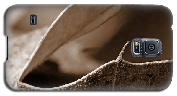 Galaxy S5 Case featuring the photograph Leaf Collage 2 by Lauren Radke