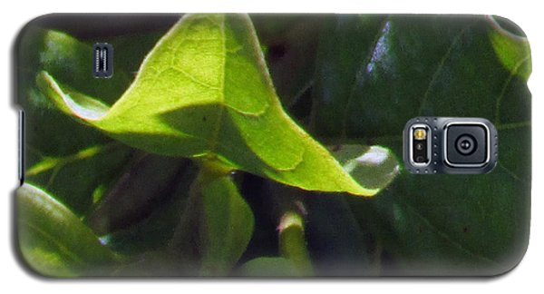Galaxy S5 Case featuring the photograph Leaf by Debi Singer