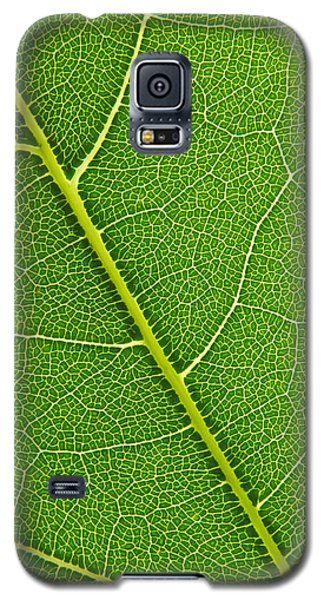 Galaxy S5 Case featuring the photograph Leaf Detail by Carsten Reisinger