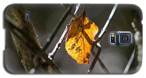Leaf. Galaxy S5 Case