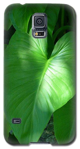 Leaf Heart Galaxy S5 Case