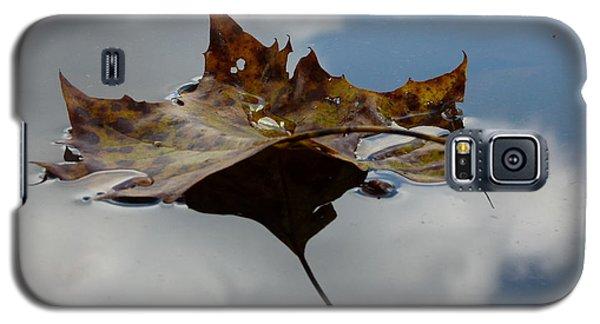 Leaf In Sky Galaxy S5 Case by Jane Ford