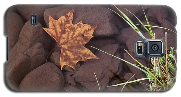 Leaf In The Mountain Fork River Galaxy S5 Case