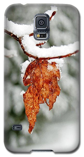 Galaxy S5 Case featuring the photograph Leaf In Winter by Barbara West