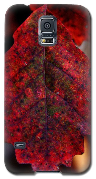 Leaf Like Galaxy S5 Case