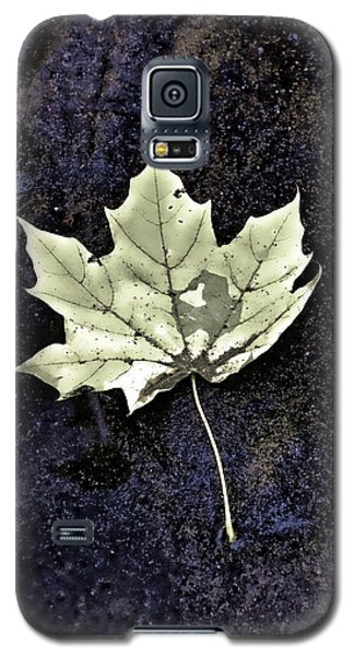 Galaxy S5 Case featuring the photograph Leaf On Dark Sand by Gary Slawsky