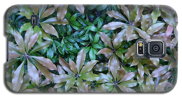 Leaf Profusion Galaxy S5 Case