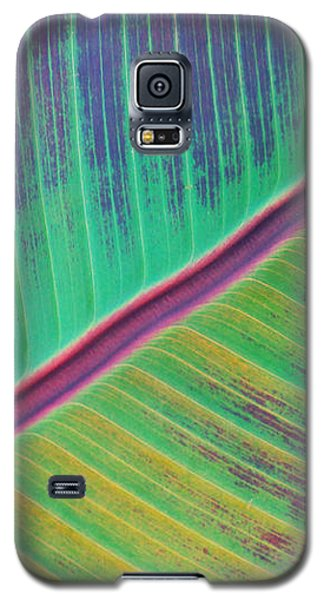 Leaf Structure Galaxy S5 Case