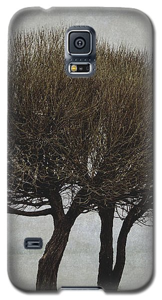 Galaxy S5 Case featuring the photograph Leafless Couple by Ari Salmela
