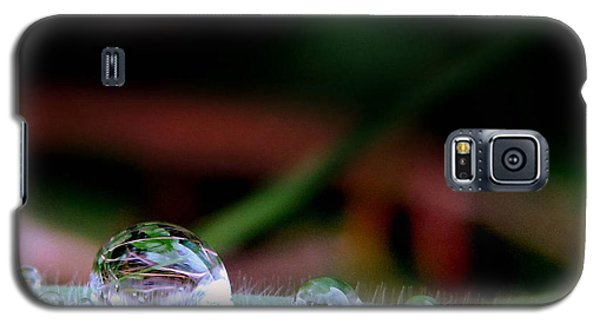 Galaxy S5 Case featuring the photograph Leafy Drop by Suzy Piatt