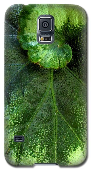 Leafy Greens Galaxy S5 Case