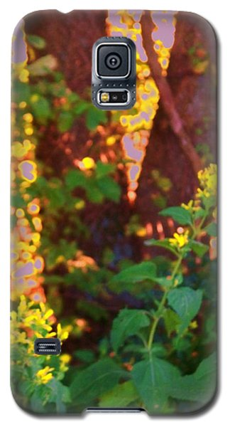 Galaxy S5 Case featuring the photograph Leafy IIi by Shirley Moravec