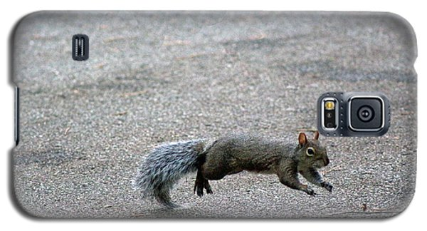 Galaxy S5 Case featuring the photograph Leaping Squirrel by Lorna Rogers Photography