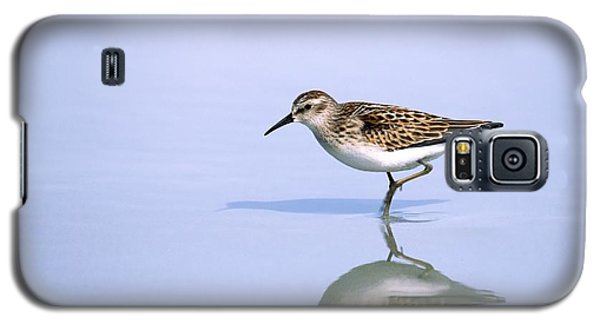 Galaxy S5 Case featuring the photograph Least Sandpiper With Reflection And Shadow by Bradford Martin