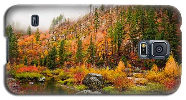 Leavenworth Colors Palette Galaxy S5 Case
