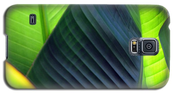 Galaxy S5 Case featuring the photograph Leaves - Green by Haleh Mahbod