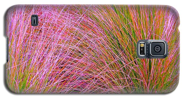 Leaves Of Grass Galaxy S5 Case by Ann Johndro-Collins