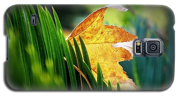 Leaves Of Grass Galaxy S5 Case