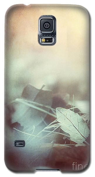 Leaves Of Time  Galaxy S5 Case by Trish Mistric