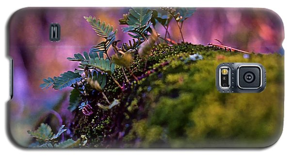 Leaves On A Log Galaxy S5 Case by Bellesouth Studio
