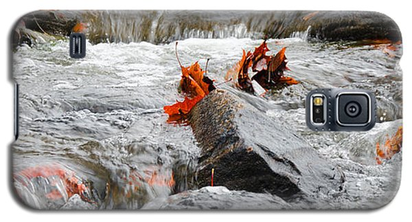 Leaves On Falling Water Galaxy S5 Case