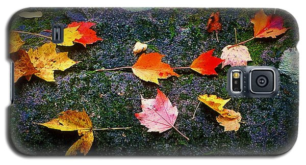 Leaves On Rock  Galaxy S5 Case