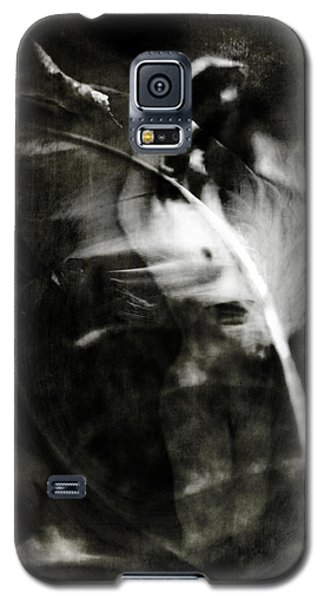 Leda And The Swan Galaxy S5 Case by Rebecca Sherman