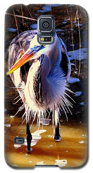 Galaxy S5 Case featuring the photograph Legs by Faith Williams