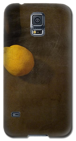 Lemon And Bottle Galaxy S5 Case by Lin Haring
