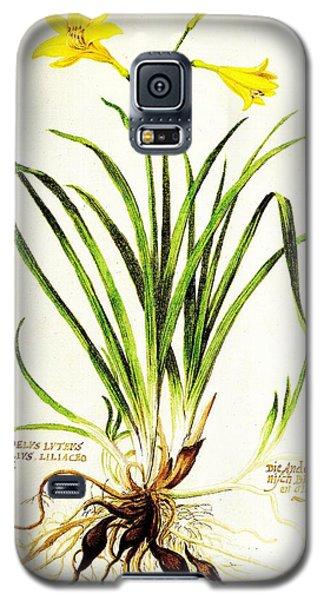 Lemon Daylily Botanical Galaxy S5 Case