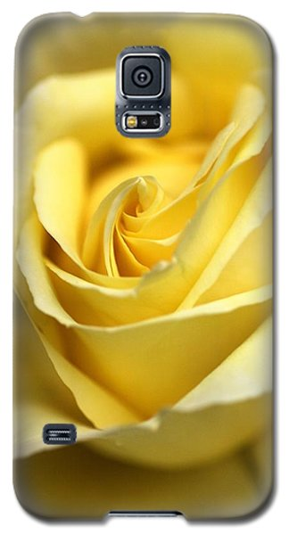 Galaxy S5 Case featuring the photograph Lemon Lush by Joy Watson