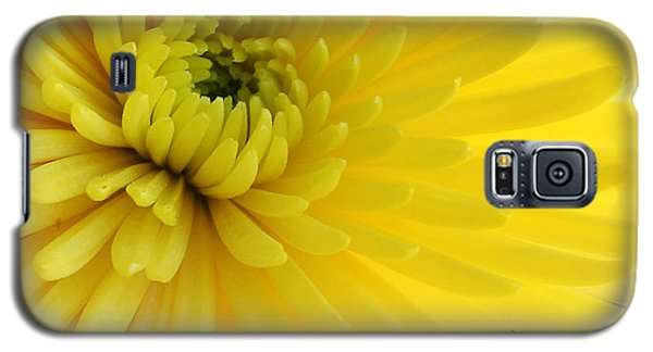 Lemon Mum Galaxy S5 Case