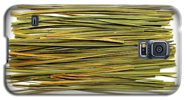 Galaxy S5 Case featuring the photograph Lemon Verbena by Fabrizio Troiani