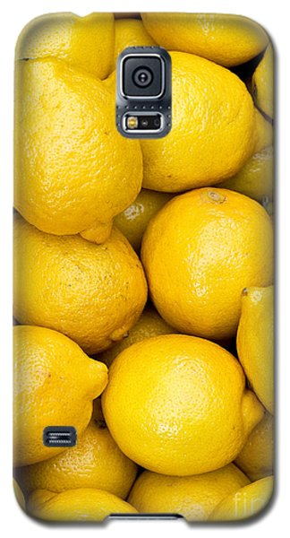 Lemons 02 Galaxy S5 Case by Rick Piper Photography