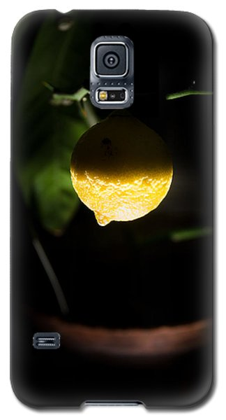 Lemon's Planet Galaxy S5 Case